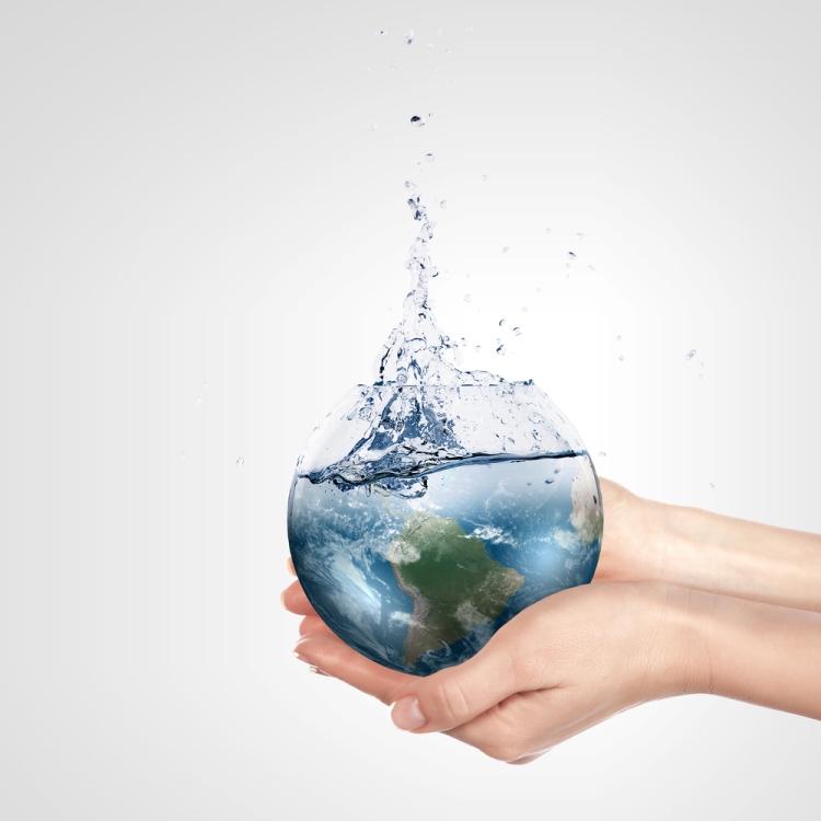 Foto Especialista Medio Ambiente interior 2 ( manos)